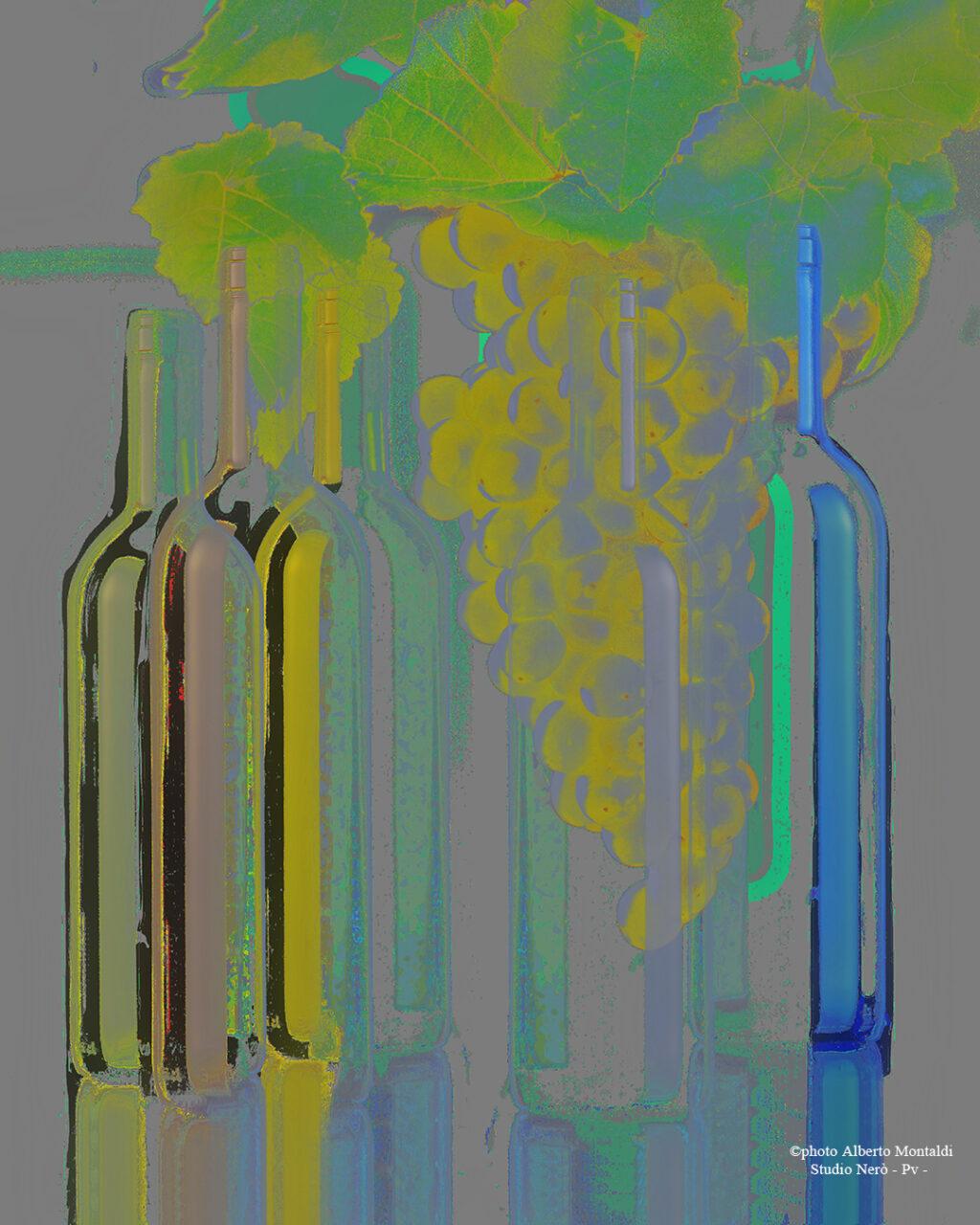 composizione bottiglie bordolesi con uva in trasparenza elaborazione