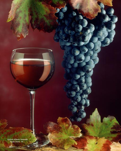 bicchiere di vino rosso con grappolo d'uva