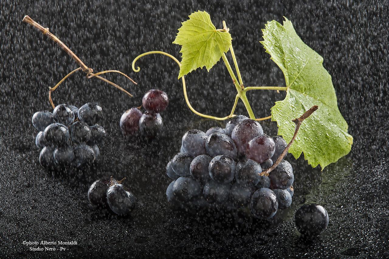 Pioggerella su Grappolini di uva nera