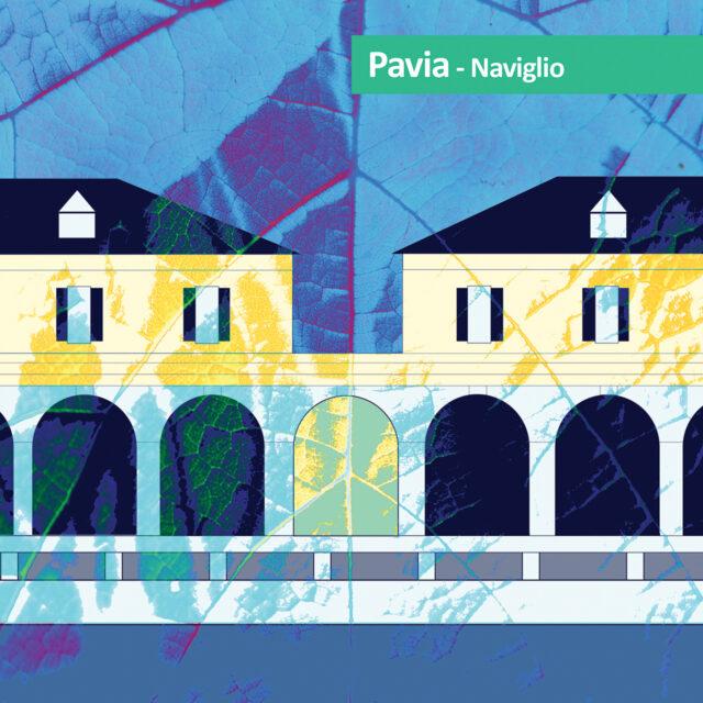 particolare di Borgo Calvenzano a Pavia